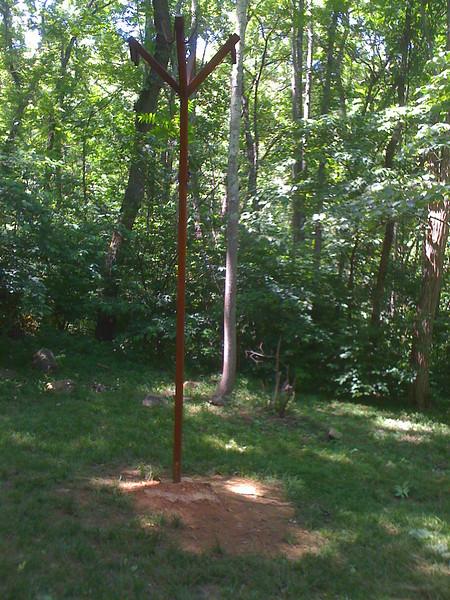 Bear Pole
