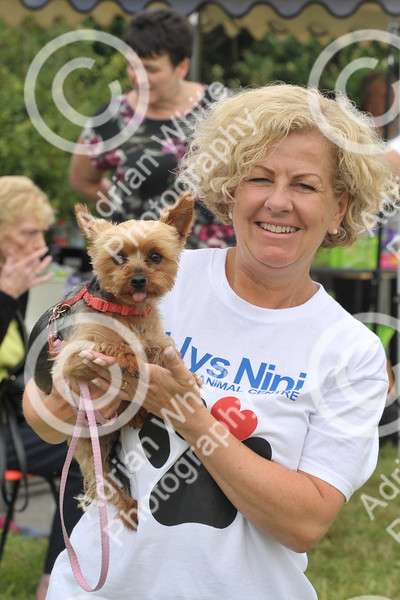 Llys Nini Annual Summer Dog Show in Penllergaer, Swansea ... Debbie Davies from the RSPCA Llys Nini.