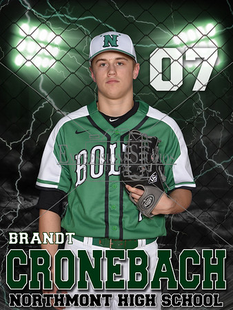 Northmont Baseball Banners and Posters 2016