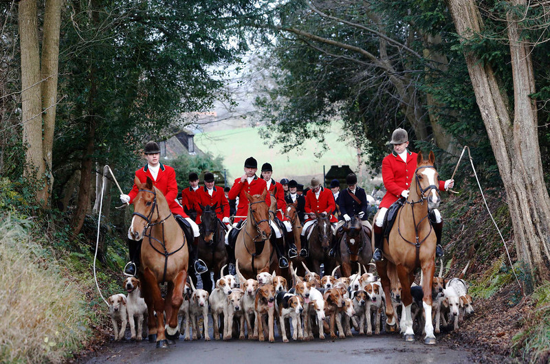 . Members of the Old Surrey Burstow and West Kent Hunt depart from Chiddingstone Castle for the annual Boxing Day hunt in Chiddingstone, south east England December 26, 2012. A ban imposed seven years ago states that foxes can be killed by a bird of prey or shot but not hunted by dogs. Hunts continue nowadays with pursuers accompanying dogs in chasing down a pre-laid scented trail.  REUTERS/Luke MacGregor