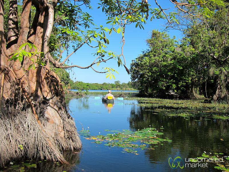 Morning Kayak Ride around Lake Nicaragua