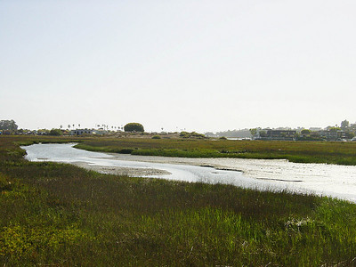 5/11/2002 - Scout O Rama - Backbay, Newport Beach