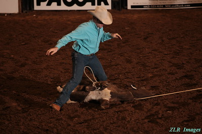2012 Rotary Classic Rodeo