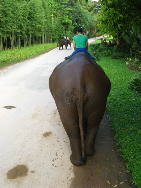 Relaxing ride around the Anantara's grounds