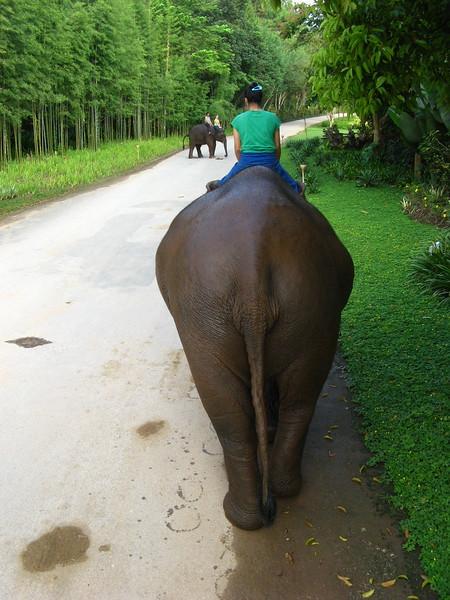 Relaxing ride around the Anantara's grounds