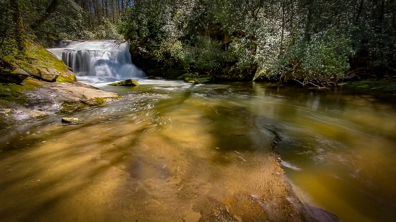 Headwaters State Forest - Pickens Mountain Trail & East Fork Falls (4-20-20)