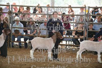 2011 Klein ISD Goats Class 3