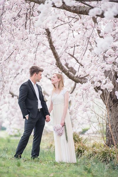 Cherry Blossoms (127 of 182).jpg