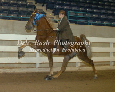 CLASS 22 JUVENILE YOUTH 11 & UNDER SPECIALTY