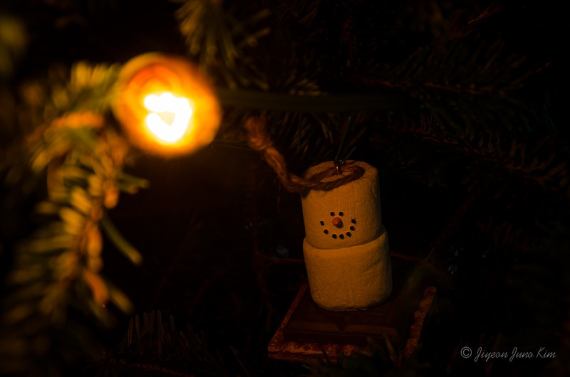 Christmas-7242.jpg