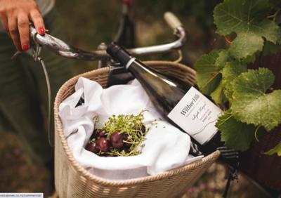 Wine Bottle Photography Ideas