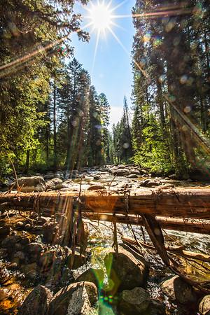 Wyoming and Idaho 2021