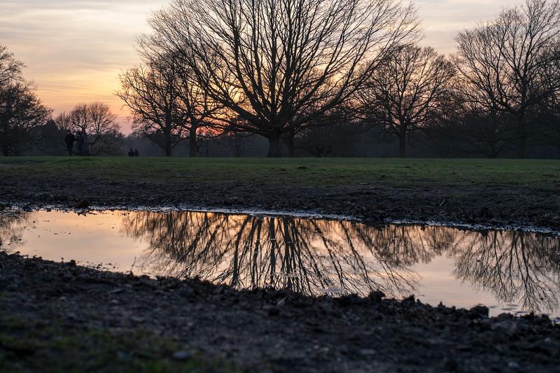Richmond Park, London, United Kingdom