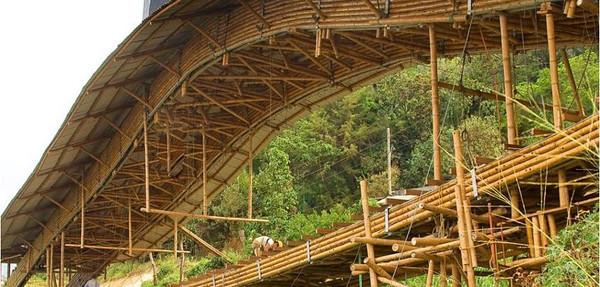 """Guadua """"bambu"""" structures"""