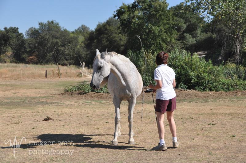 EB&Horses-079.jpg