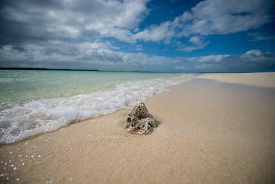 A treasure in the Banda sea - Kei Kecil