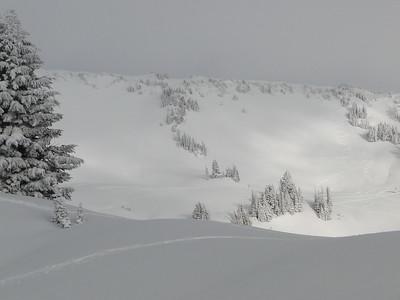Rainier Snowshoe