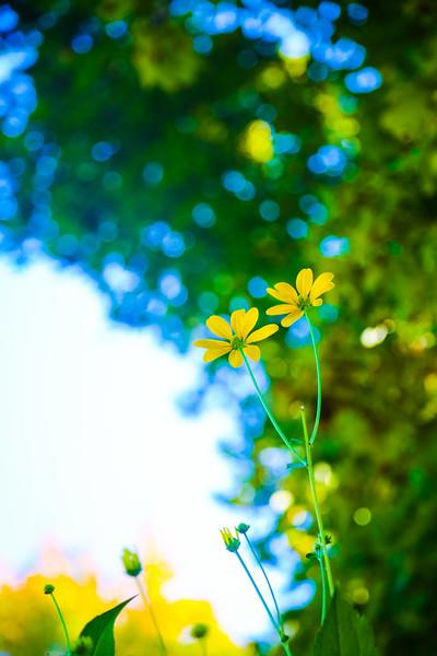 © Gloss Photography Studios-15.jpg