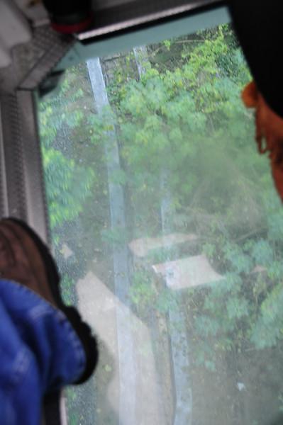 20110123_TaipeiDay2_0027.JPG