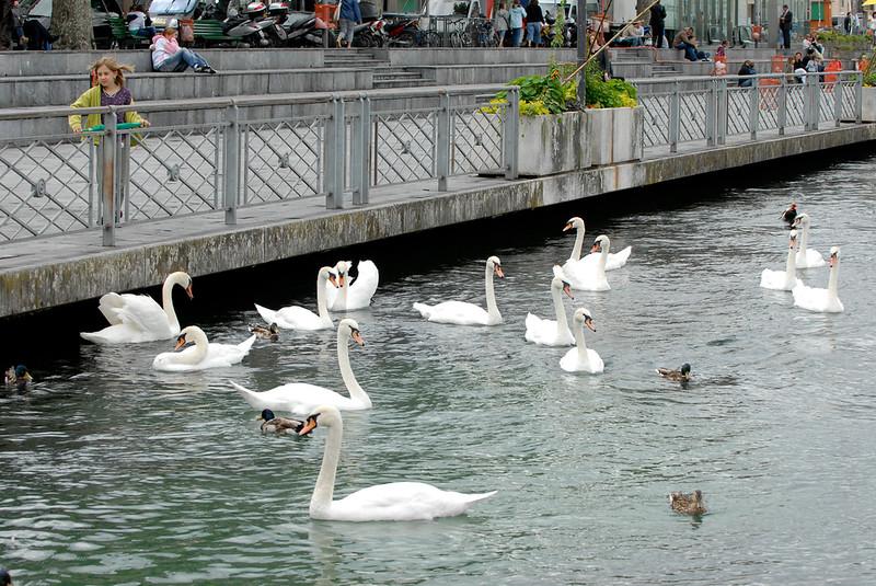 070626 7455 Switzerland - Geneva - Downtown Hiking Nyon David _E _L ~E ~L.JPG