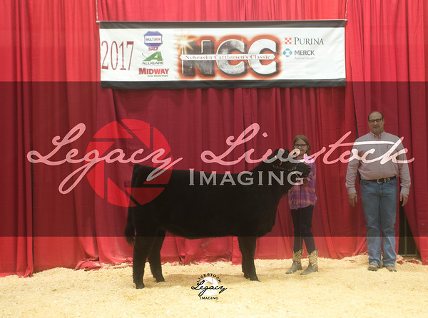 Limousin and Limflex