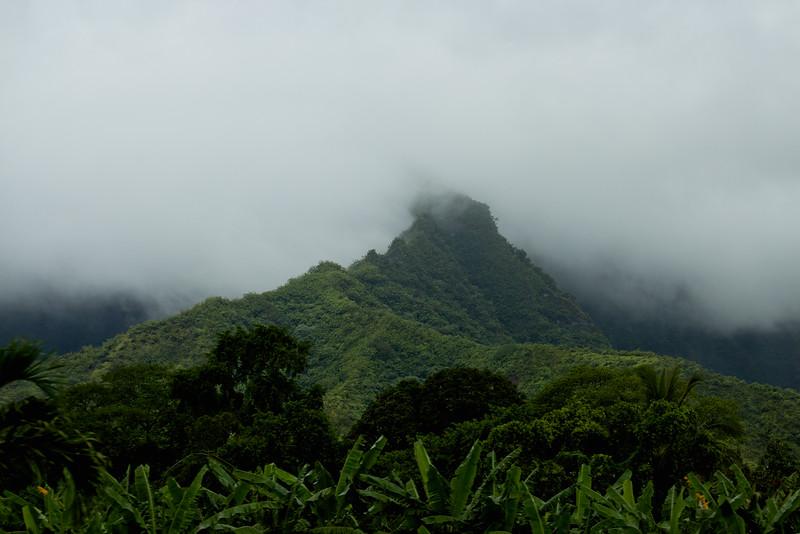 Journey into Oahu Photograph 41