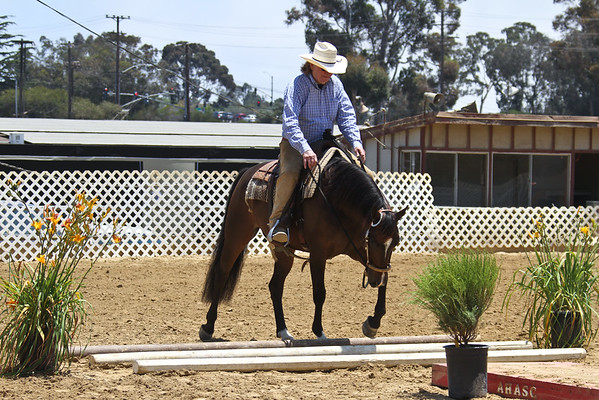 HA Western Trail - Jr Horse