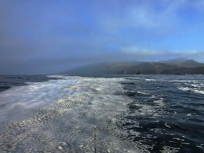 Bodega Bay'15
