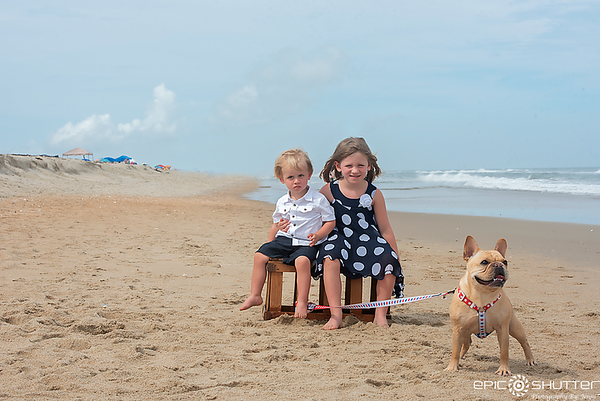 French Bull Dog, Family Portraits, Family Dog, Cape Hatteras National Seashore, Avon, North Carolina, Epic Shutter Photography, Outer Banks Photographer, Hatteras Island Photographer, OBX Family Vacation, Frenchie