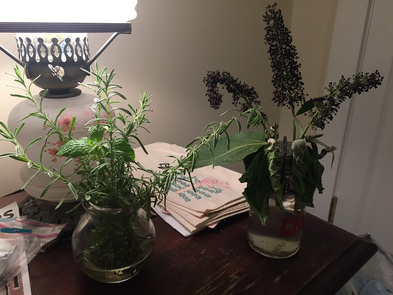 Fresh herb arrangement in our room at LuMa's house.