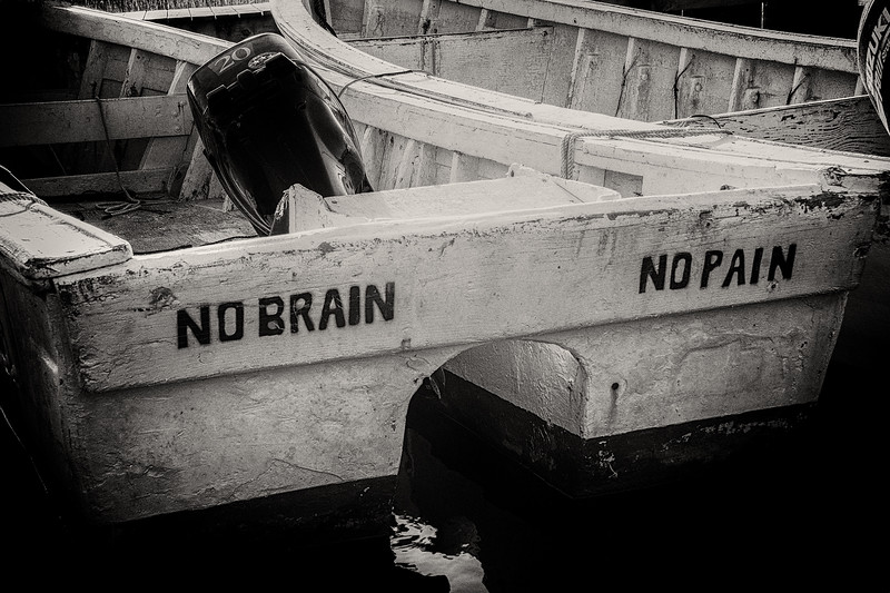 NoBrain - Copy.jpg