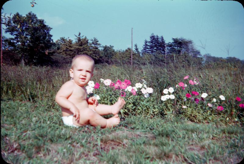 baby richard in flower field.jpg