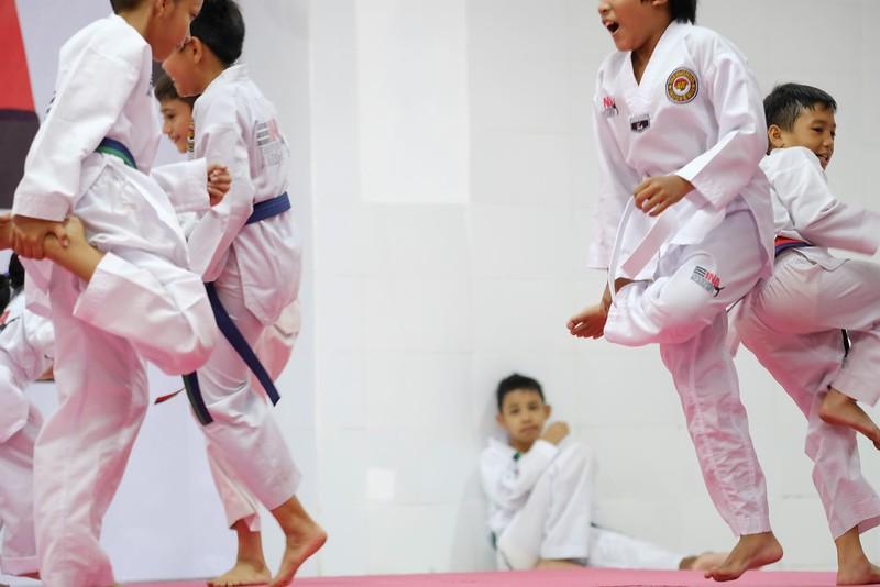 INA Taekwondo Academy 181016 200.jpg