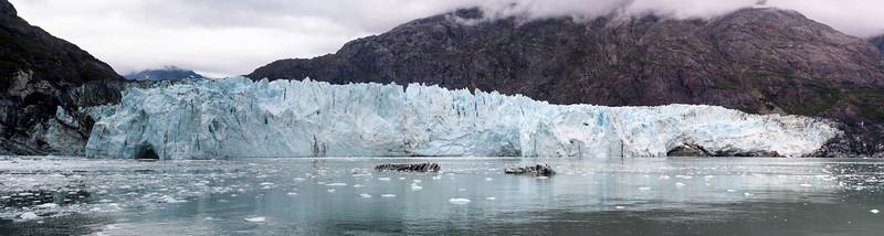 20170819__KT54676_2017-08-19 Alaska Gustavus Glacier Bay 7637 Panorama Margerie Glacier 2.jpg