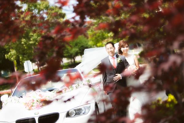 Wedding Hightlights