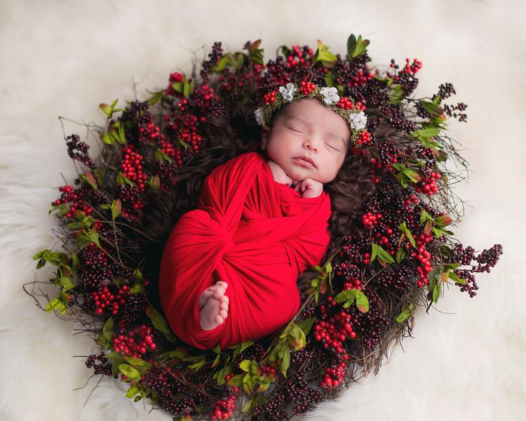 Sanchez Newborn