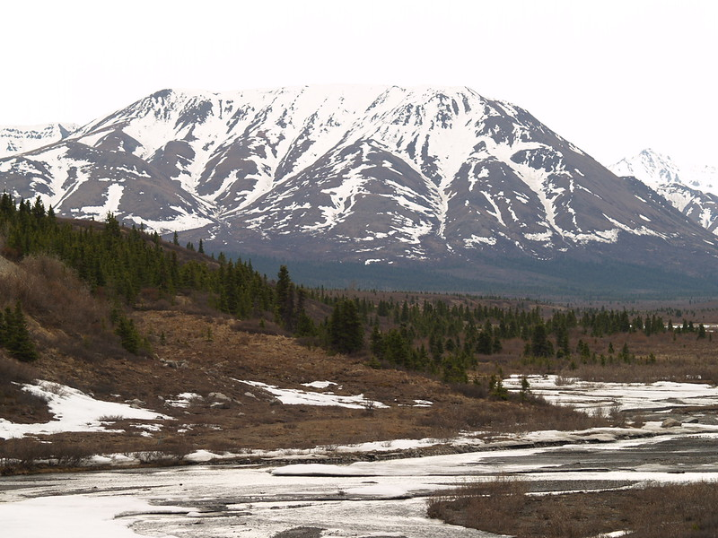 Toklat River (foreground) at Polychrome Pass.
