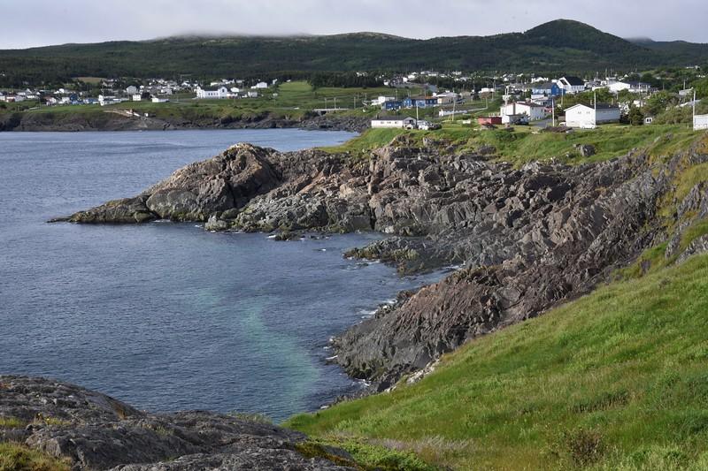 Newfoundland One