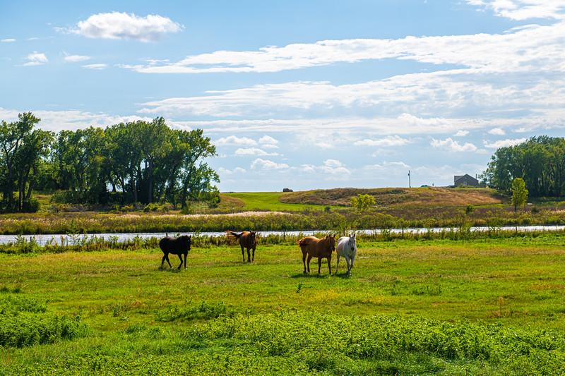 Horn Ranch-1249.jpg