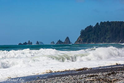 Olympic National Park  - Plus  -  June 2019