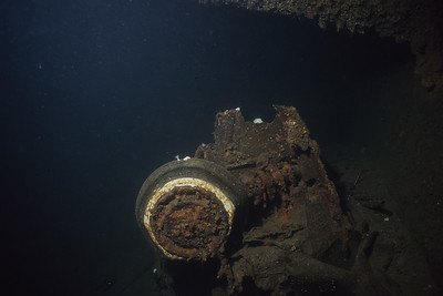 35mm Underwater Photography