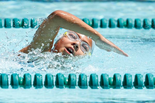 FHCC Swim