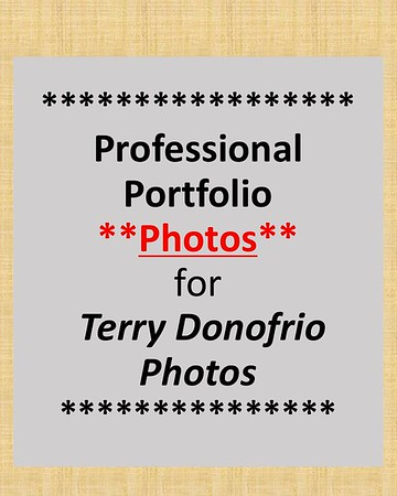 Professional Portfolio Photos