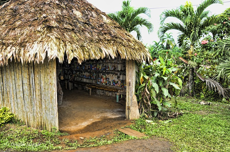 Maleku Village: traditional hut