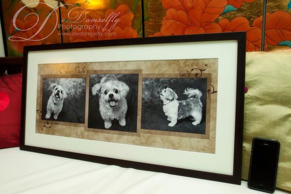 Framed Fine Art Collage
