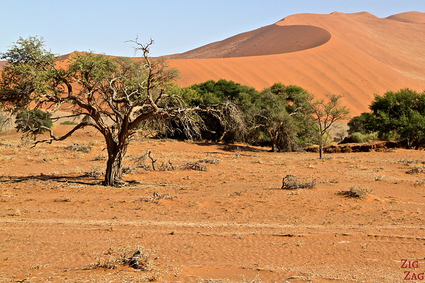 Sossusvlei, walk in the sand dunes, Namibia photo 1