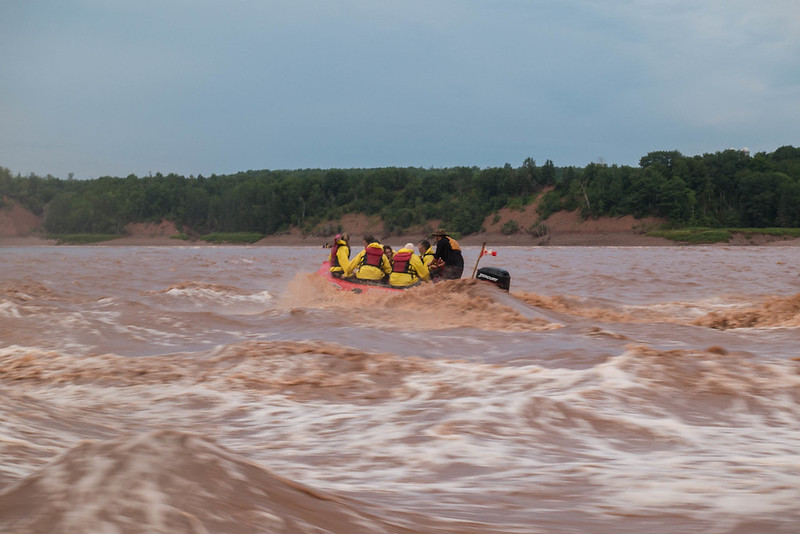tidal bore rafting bay of fundy