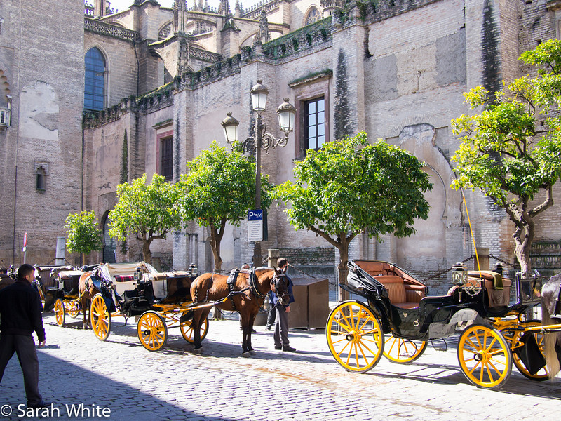 Seville 2013-117.jpg