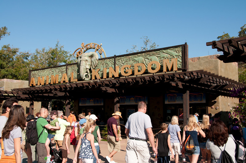 Animal Kingdom - March 17, 2011