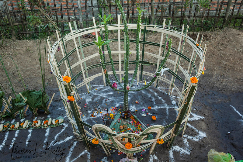 Cactus Shrine